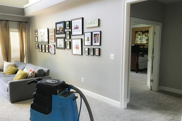 Residential Carpet Cleaning Towson Park, Towson