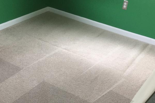 Steam Carpet Cleaning Burnbrae, Towson