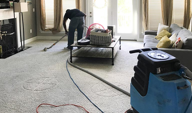 Towson Carpet Cleaning Professional Cleaning Services In